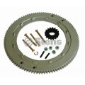 Flywheel Ring Gear / Briggs & Stratton 399676